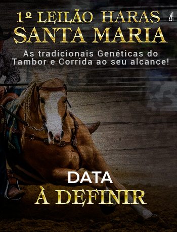 https://www.lgleiloes.com.br/LG Leilões