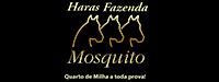 Fazenda Mosquito