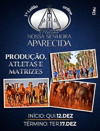 https://www.lgleiloes.com.br/Leilão HNSA