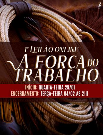 https://www.lgleiloes.com.br/1º Leilão Virtual A Força do Trabalho
